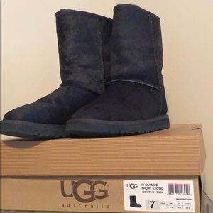 Navy blue Uggs size 7